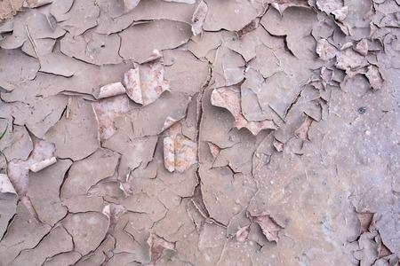 craze: Dry land. Cracked ground background.