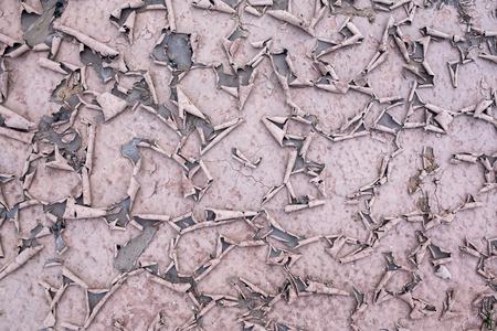 the silence of the world: Dry land. Cracked ground background.