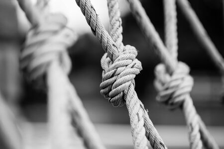 roped: Rope with a knot black and white style