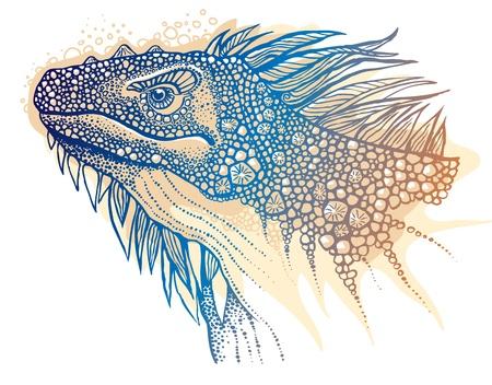 Vector illustration of iguana Vector