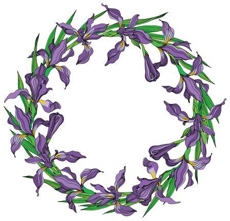 Iris wreat vector illustration