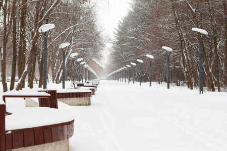 lanterns and benches in alley of park on winter day outdoors photo