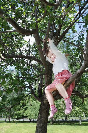Happy little cute girl sits on tree branch in park at summer day photo