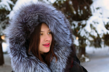 furskin: Beautiful girl in fur coat with hood stands near big snowy spruces in winter forest Stock Photo