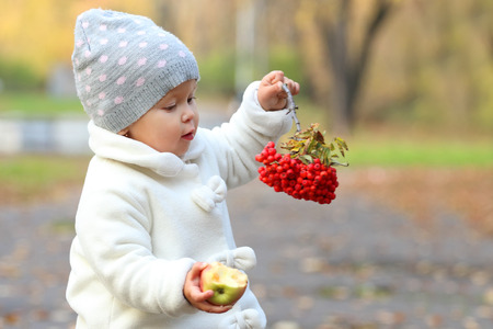 rowanberry: Little cute girl in white holds apple and rowanberry in autumn park