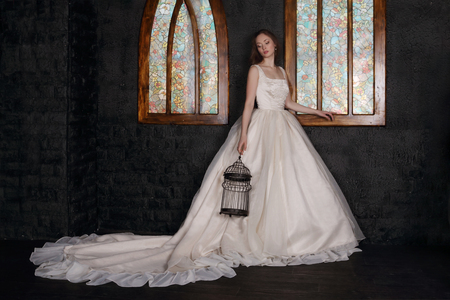 Beautiful woman in long dress holds bird cage near windows in black studio Standard-Bild