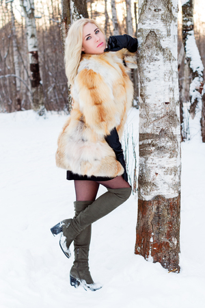 Blonde in fur coat, boots poses near birсh outdoor at winter day in forest Stok Fotoğraf