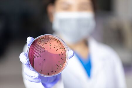 Analysis and study vaccine of Coronaviruses disease (CoV) in the laboratory. Foto de archivo