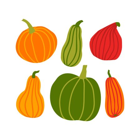 Hand draw Pumpkin Set in simple Doodle Style. Vector illustration colorful Pumpkins of different shapes and sizes isolated on white Background. Иллюстрация