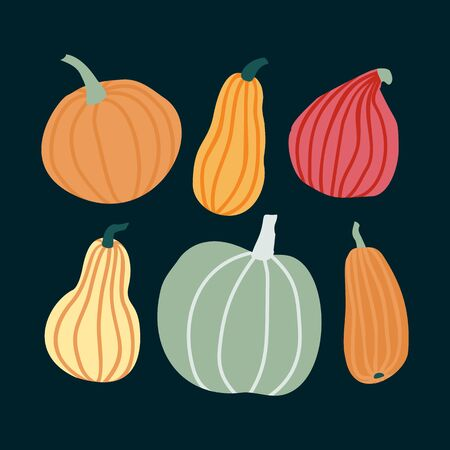 Hand draw Pumpkin Set in simple Doodle Style. Vector illustration Pumpkins in Pastel color of different shapes and sizes isolated on dark background. Иллюстрация