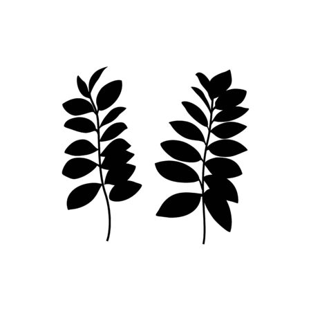 Black zamia Leaf Silhouette isolated on white background. Vector Illustration.