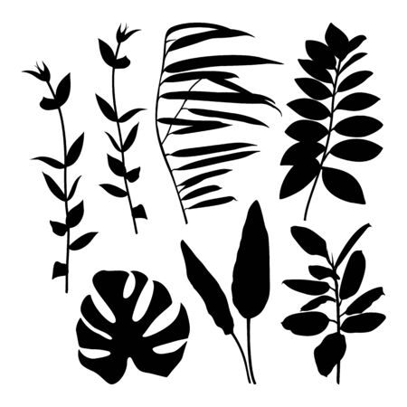 Set of Black Silhouette of Plants and leaves isolated on white background. Vector Illustration.