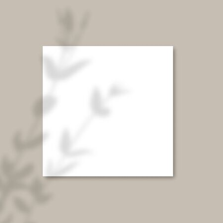 The shadow of the plants. Square Paper Mockup with realistic shadows overlays leaves on gray background.