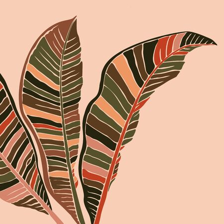 Tropical banana leaves leaves in a minimalist trendy style. Silhouette of a plant in a contemporary simple style. Vector illustration collage. For t-Shirt Print, card, poster, social media post