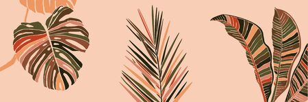 Tropical Palm Leaves in a minimalist trendy style.