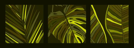 Tropical Palm Leaves in a minimalist trendy style. Silhouette of a plant banana, monstera and Dypsis in a contemporary abstract style. Vector illustration collage. For card, poster, social media