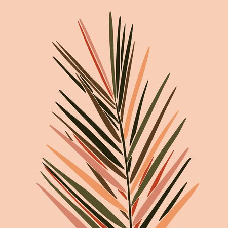 Tropical Dypsis leaves in a minimalist trendy style. Silhouette of a plant in a contemporary abstract style.