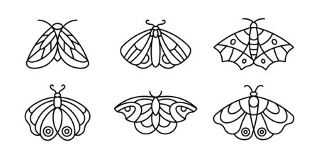 A set of Moths and Butterfly icon Outlines in a minimalist style.
