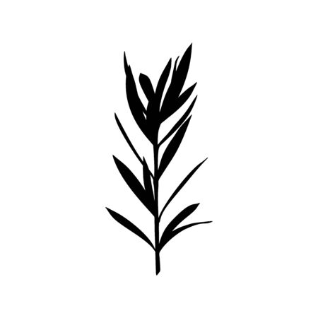 Black Silhouette of a branch of a Plant isolated on a white background. Vector illustration of Tropical leaves to create shadows, backgrounds and logos
