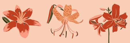 Set Art collage lily flower in a minimal trendy style. Silhouette of lily plants in a contemporary simple abstract style on a pink background.