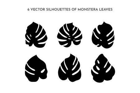 Set of black silhouettes of Monstera leaf. Vector Palm leaf For printing on t-shirt, Web Design, beauty Salons, Posters, tattoo and patterns 向量圖像