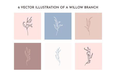 Set of Willow branch with leaves in a trendy minimalistic style. Outline of a botanical design elements. Floral vector illustration. For printing on t-shirts, web design, posters,  creation 向量圖像