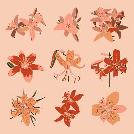 Collection Art collage lily flower in a minimal trendy style. Silhouette of lily plants. Vector