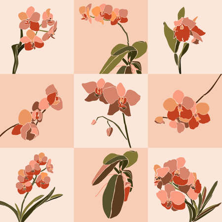 Art collage orchid flower in a minimal trendy style. Orchid plants on a pink background. 向量圖像