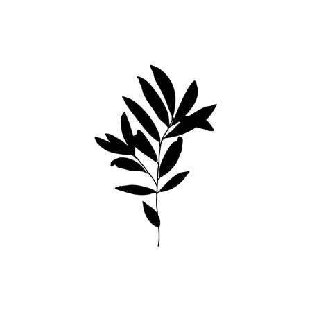 Silhouette Olive Branch with leaves. Outline Botanical leaves In a Modern Minimalist Style.