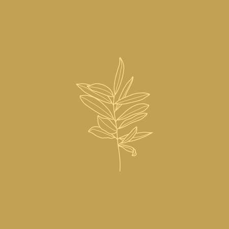 Olive Branch with leaves. Outline Botanical leaves In a Modern Minimalist Style. Vector Illustration.