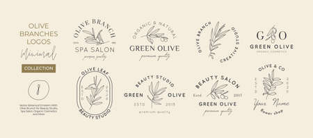 Set of Olive branch with leaves  design template in simple minimal linear style. Abstract Feminine Vector Signs with Floral Illustration for Beauty Studio, SPA, Organic cosmetics, creative studio Illustration