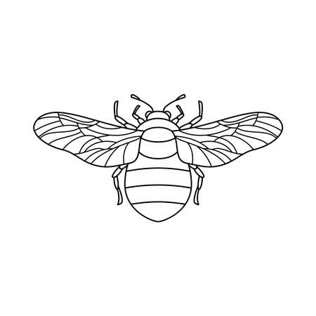 Bumblebee icon in a Linear Minimalist trendy style. Vector outline Emblem of Insect with wings for  beauty salons, manicures, massages, spas, jewelry, tattoos, and handmade artists.