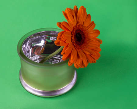 intensity: Still life with orange flouwer in bowl on green backgrond Stock Photo