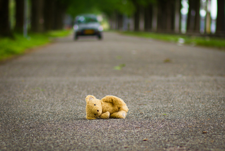tardy: ?eddy bear lies on the road