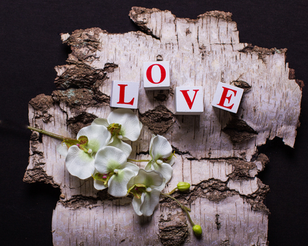 3d bricks with letters forming word love on the background of birch bark