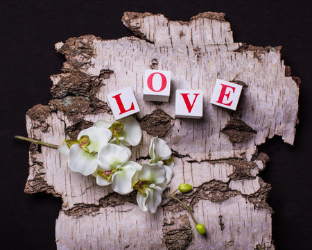 3d bricks with letters forming word love on the background of birch bark with orchid
