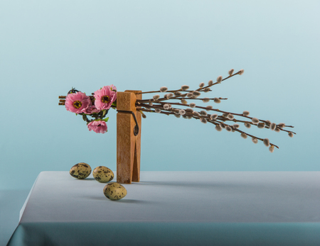 huevos de codorniz: Clothespin with pussy willow catkins, pimk flowers and  quail eggs on the blue background and tablecloth.