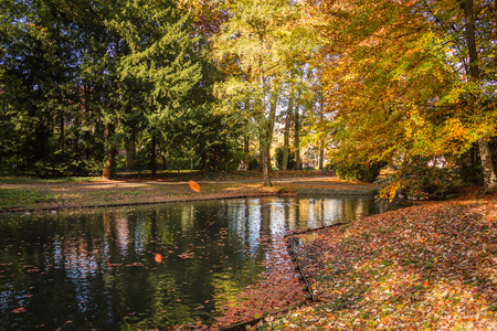 ample: Cyclist in a beautiful autumn park space with a pond Stock Photo