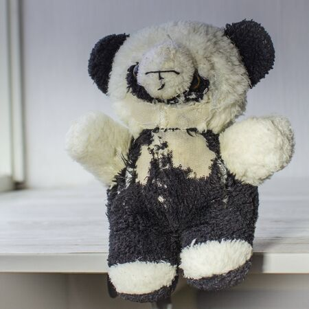 sufferer: Animal protection concept. Dilapidated plush panda toy