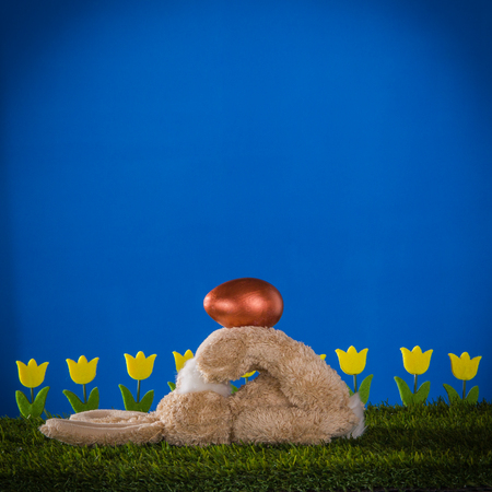 Cheerful capable rabbit, tulips and decorative egg on the grass and vivid blue background.