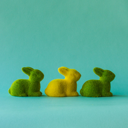 Three rabbits on the turquoise pastel background in same right direction.