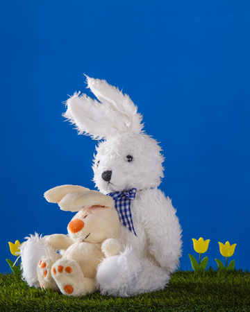 waif: Composition with white teddy drear rabbit and one cheerful rabbyt, yellow tulips on the blue background. Stock Photo