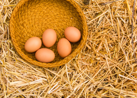 Five biologic fresh eggs from the farm lies on the straw background in tha basket.