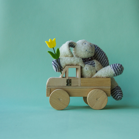 Teddy rabbit toy sitting comfortable with yellow tulip on the car and turquoise background.