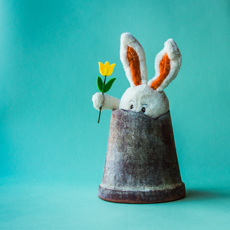 Toy teddy rabbit with yellow tulip sitting hides in a broken ceramic flower pot.