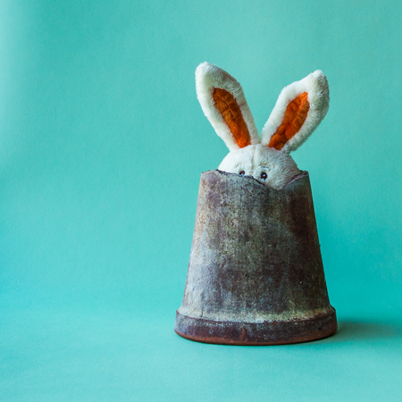 Toy teddy rabbit hides in a broken ceramic flower pot. Stock Photo