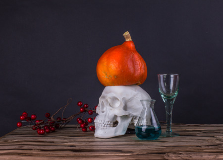 Still life with skull, pumpkin, rowan and test tubes with liquid Stock Photo