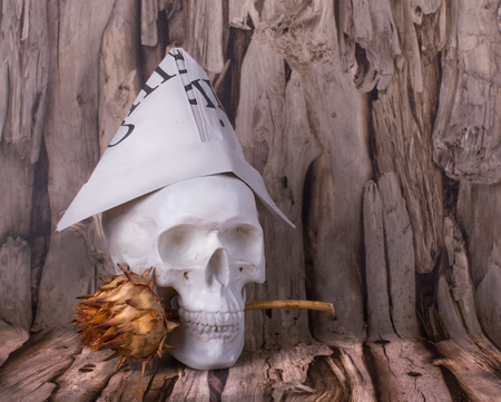 Skull with dry flower on the wooden background