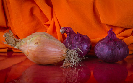 Two onion types on the colorful orange  material background with beautiful folds