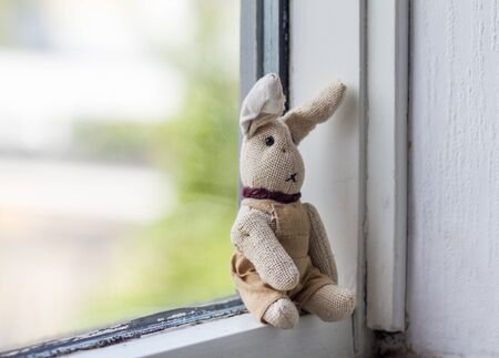 Annoyance concept. Dreamily bunny sitting alone on the windowsill..